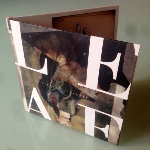 Stefano Guzzetti, copertina dell'album Leaf. Artwork di Claudia Pomowski e design di Vaughan Oliver.