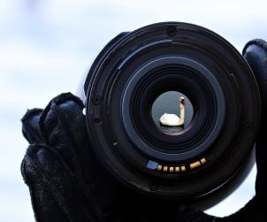 Il primo click. Consigli per esordienti della fotografia - www.mockupmagazine.it